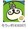 mrapo001